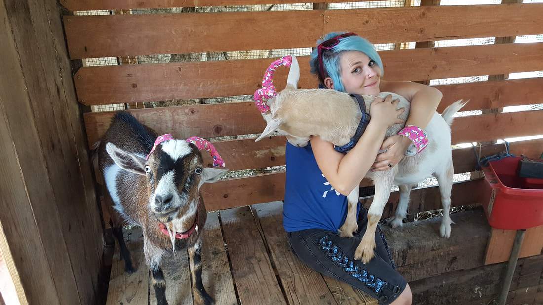 7f8e77cea6f We Re Also Available For Film Tv Goat Yoga And Hiking With Goats In Los  Angeles