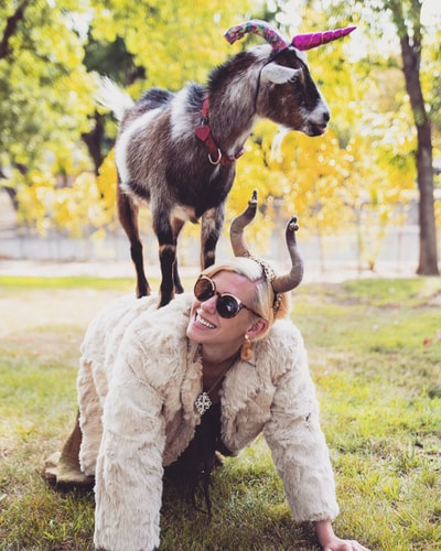 8177e2c9745 Goat Yoga in Los Angeles with the Party Goats! Get your goat on in a ...